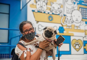 Em agosto, Hospital Veterinário do Recife realiza 1 mil castrações gratuitas de cães e gatos