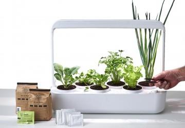 Startup de agricultura urbana lança horta inteligente para quem deseja cultivar seu próprio alimento em casa