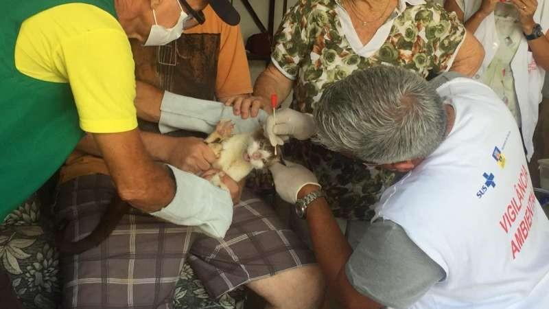 Profissionais de Caruaru, Igarassu e da Saúde Estadual acompanharam trabalho realizado em Olinda