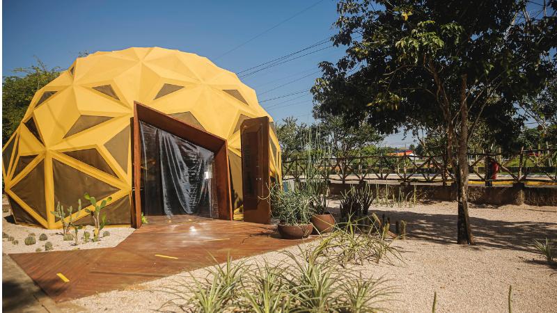 A 5ª edição da Mostra Ambiental de Cinema do Recife (MARÉ) chega em sua reta final com a exibição de uma série de curtas-metragens na Arena Arbor do Jardim Botânico do Recif