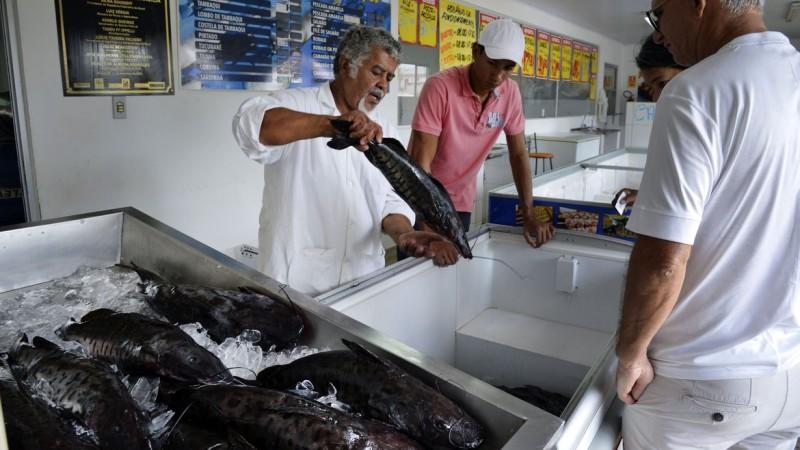 Ministério alerta para o consumo dos produtos sem o selo de inspeção