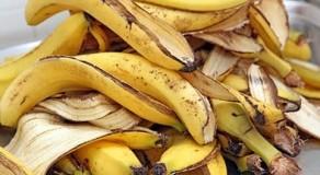 Casca de banana: uma aliada para a beleza e saúde