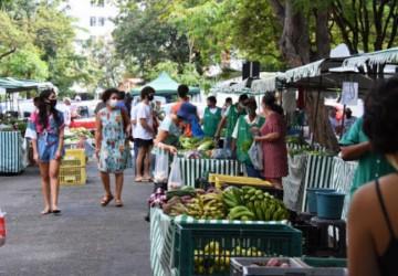 Governo de Pernambuco vai fortalecer e ampliar as feiras agroecológicas