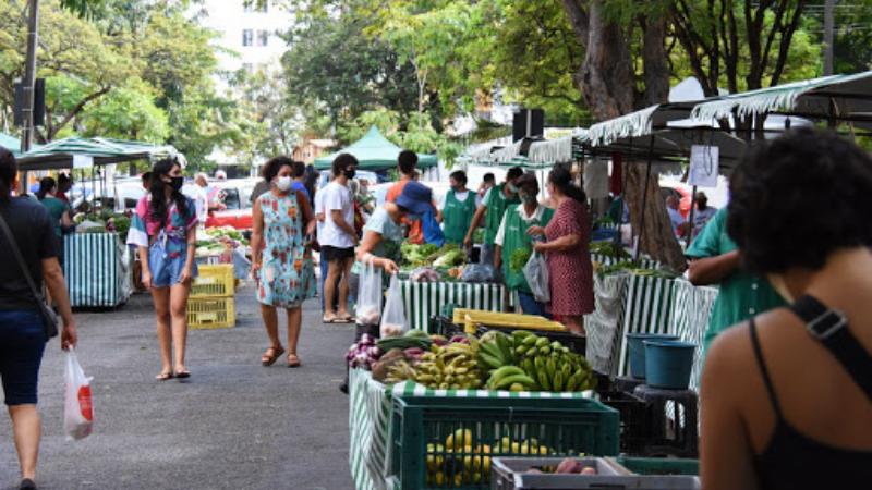 Projeto enviado à Assembleia cria a Política Estadual de Agroecologia, estimulando a abertura de novas feiras, segmento no qual o Estado já é líder no Nordeste