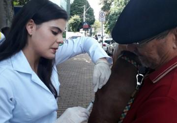Campanha de vacinação antirrábica começa no próximo sábado (24)