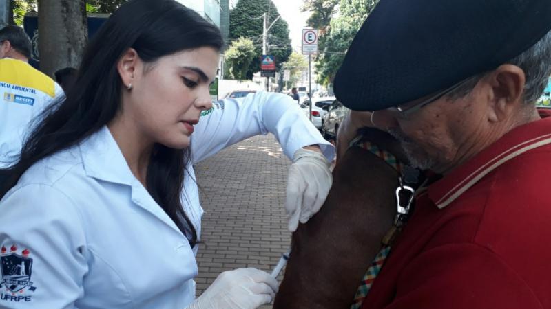 A Secretaria de Saúde do Recife vai fazer a vacinação dos cachorros e gatos de casa em casa, em áreas estratégicas, e também montará postos fixos de imunização