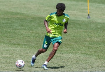 CONMEBOL Recopa Sul-Americana: Palmeiras busca redenção em mais uma decisão continental