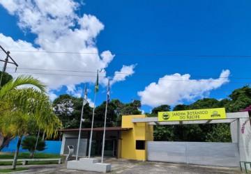 Prefeitura do Recife distribui mudas ornamentais e medicinais em homenagem às Mães