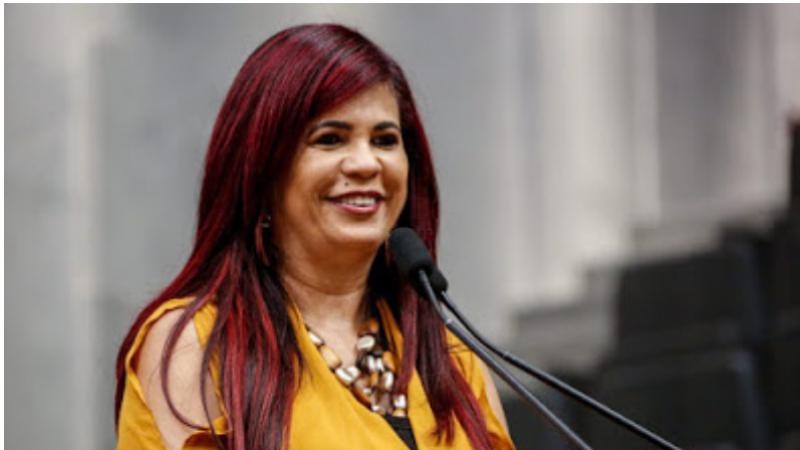 O projeto de Lei é de autoria da deputada Delegada Gleide Ângelo e recebeu substitutivo da CCLJ incorporando proposta semelhante do deputado Paulo Dutra.