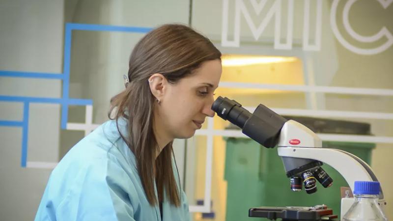 A SILBA apresentou bons resultados nos ensaios pré-clínicos em animais e deve ser testada em humanos a partir de julho.