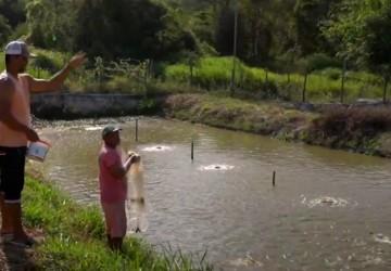 Piscicultores de Sairé recebem assistência técnica do IPA para produção de tilápia