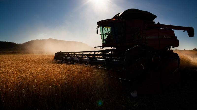 Relatório inédito feito por pesquisadores do Brasil, Portugal e Dinamarca afirma que modelo de produção agrícola deixou o Brasil mais exposto aos efeitos da pandemia