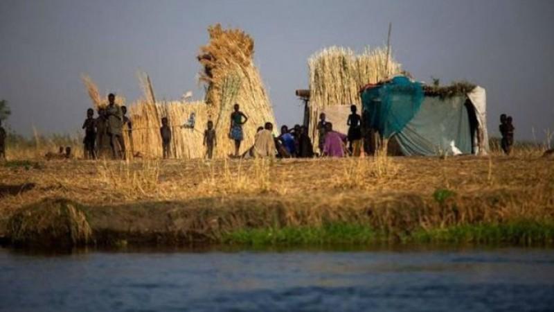 Subalimentação atinge 2,5% da população no Brasil, diz ONU