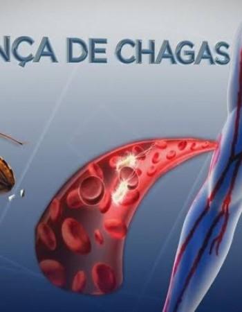 Sobe para 27 o saldo de pacientes que estão recebendo tratamento para doença de Chagas, em PE