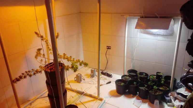 Proprietário foi detido no momento em que iria trocar a droga por cocaína no TIP
